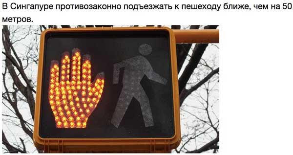 Туповатые правила дорожного движения со всего мира